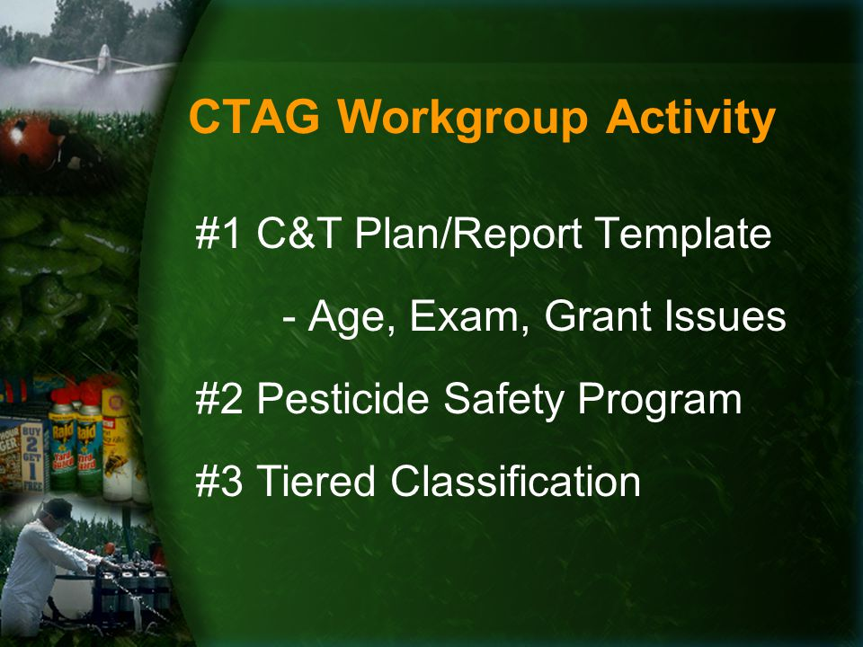 CTAG Workgroup Activity #1 C&T Plan/Report Template - Age, Exam, Grant Issues #2 Pesticide Safety Program #3 Tiered Classification