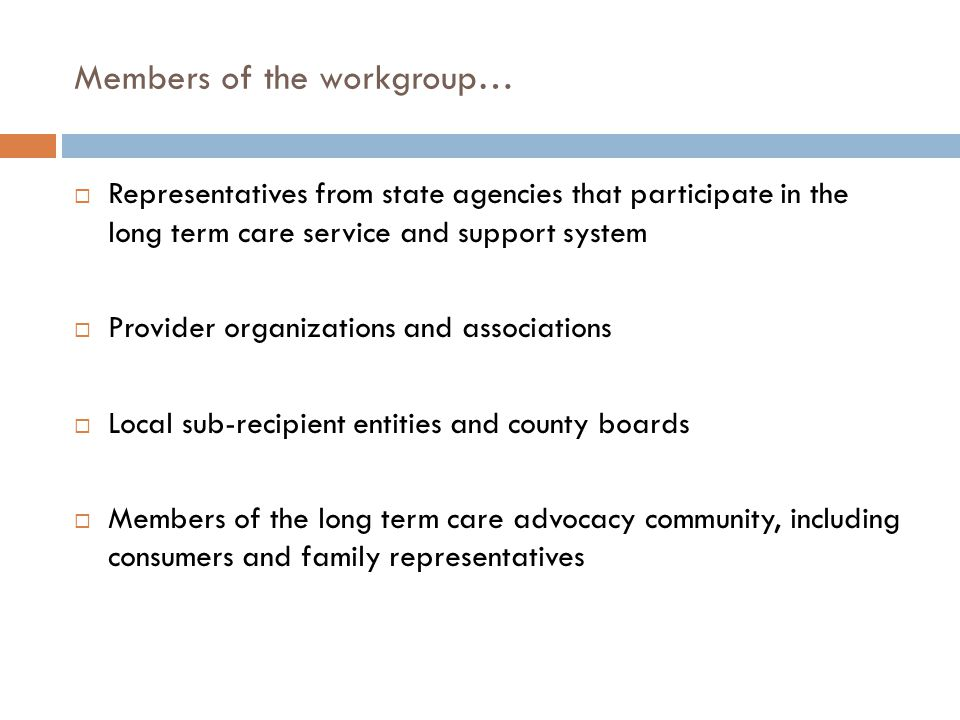 Members of the workgroup…  Representatives from state agencies that participate in the long term care service and support system  Provider organizat