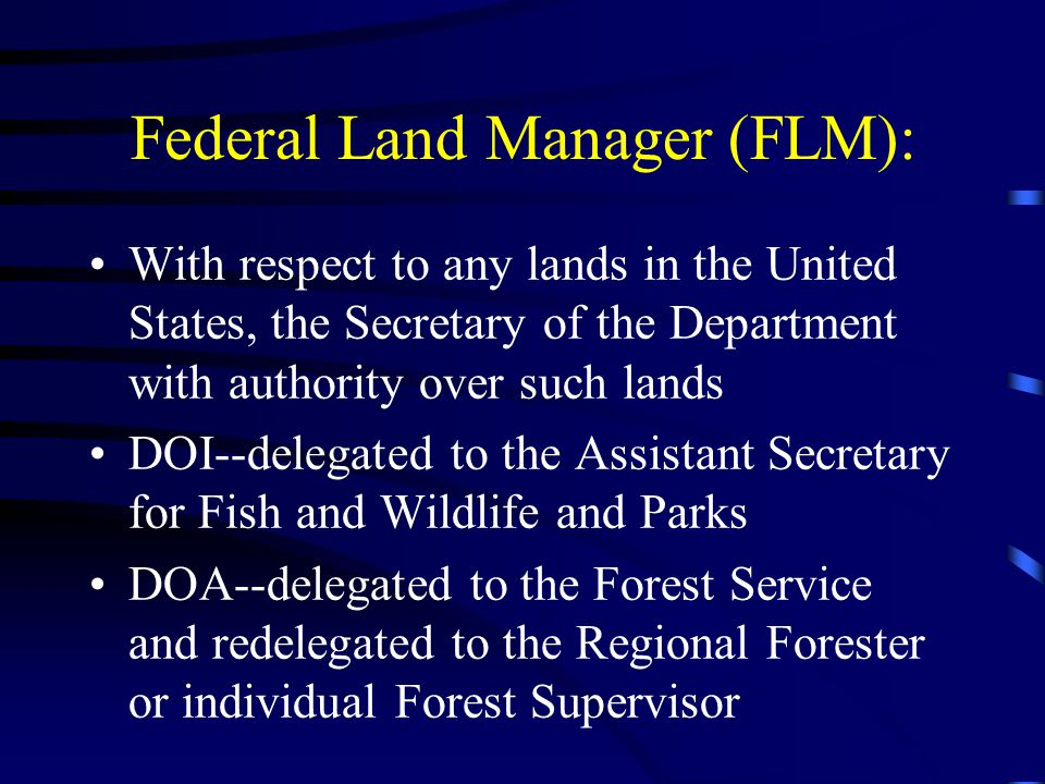Federal Land Manager (FLM): With respect to any lands in the United States, the Secretary of the Department with authority over such lands DOI--delegated to the Assistant Secretary for Fish and Wildlife and Parks DOA--delegated to the Forest Service and redelegated to the Regional Forester or individual Forest Supervisor