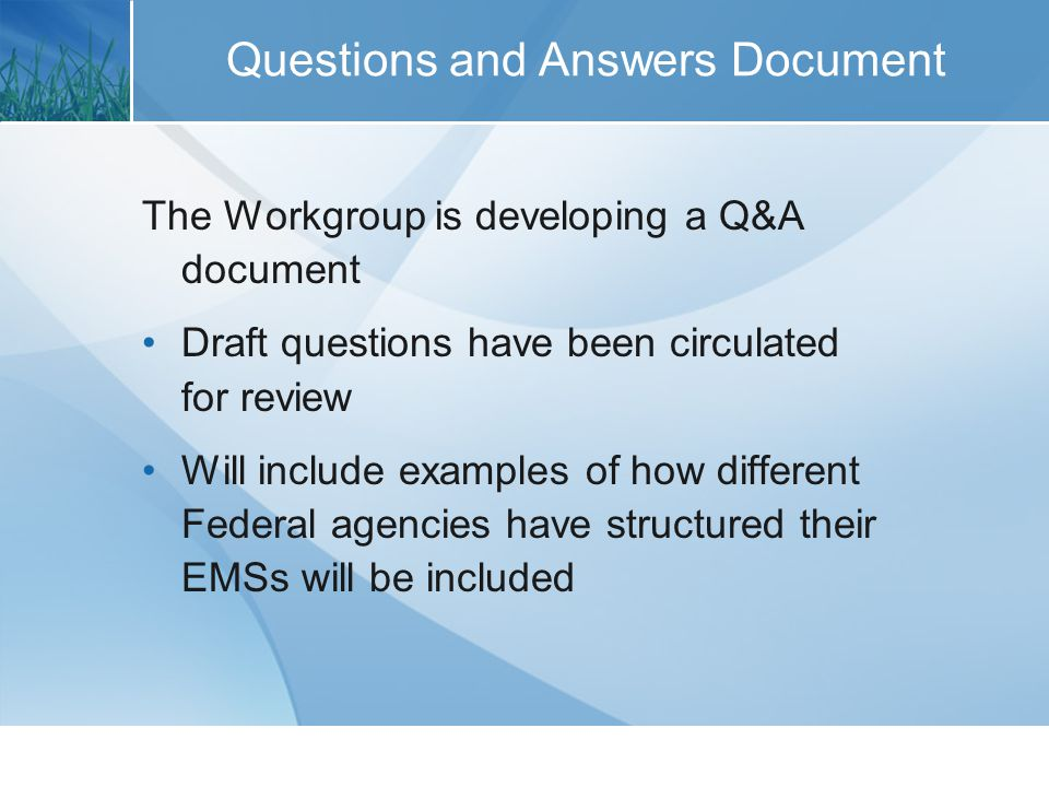 Questions and Answers Document The Workgroup is developing a Q&A document Draft questions have been circulated for review Will include examples of how different Federal agencies have structured their EMSs will be included