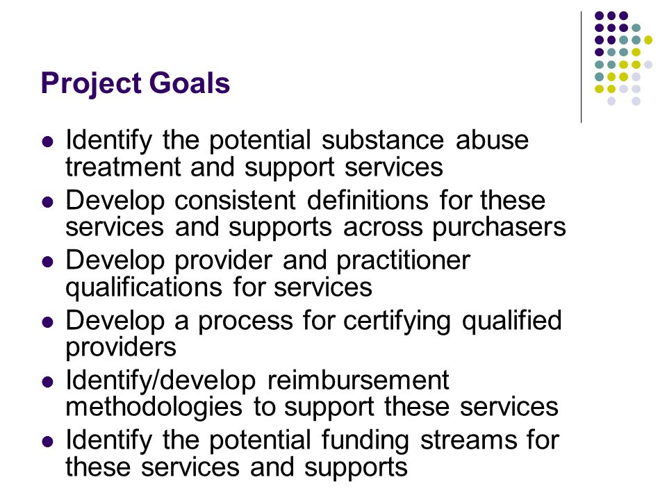 Project Goals Identify the potential substance abuse treatment and support services Develop consistent definitions for these services and supports across purchasers Develop provider and practitioner qualifications for services Develop a process for certifying qualified providers Identify/develop reimbursement methodologies to support these services Identify the potential funding streams for these services and supports