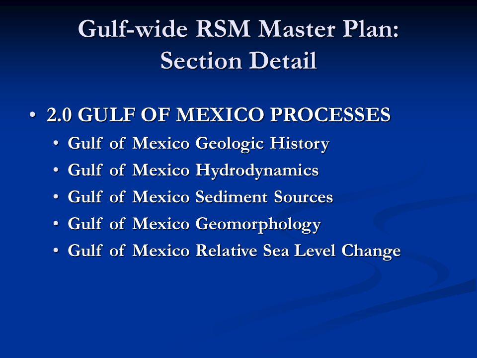 Gulf-wide RSM Master Plan: Section Detail 2.0 GULF OF MEXICO PROCESSES2.0 GULF OF MEXICO PROCESSES Gulf of Mexico Geologic HistoryGulf of Mexico Geolo