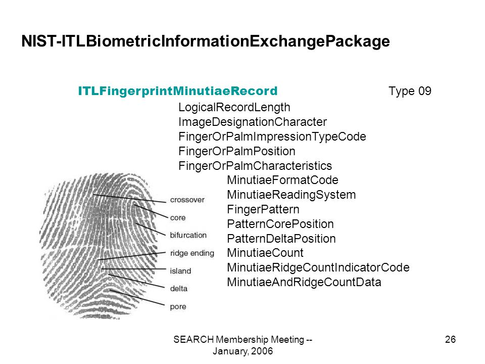 SEARCH Membership Meeting -- January, 2006 26 NIST-ITLBiometricInformationExchangePackage Type 09 ITLFingerprintMinutiaeRecord LogicalRecordLength ImageDesignationCharacter FingerOrPalmImpressionTypeCode FingerOrPalmPosition FingerOrPalmCharacteristics MinutiaeFormatCode MinutiaeReadingSystem FingerPattern PatternCorePosition PatternDeltaPosition MinutiaeCount MinutiaeRidgeCountIndicatorCode MinutiaeAndRidgeCountData