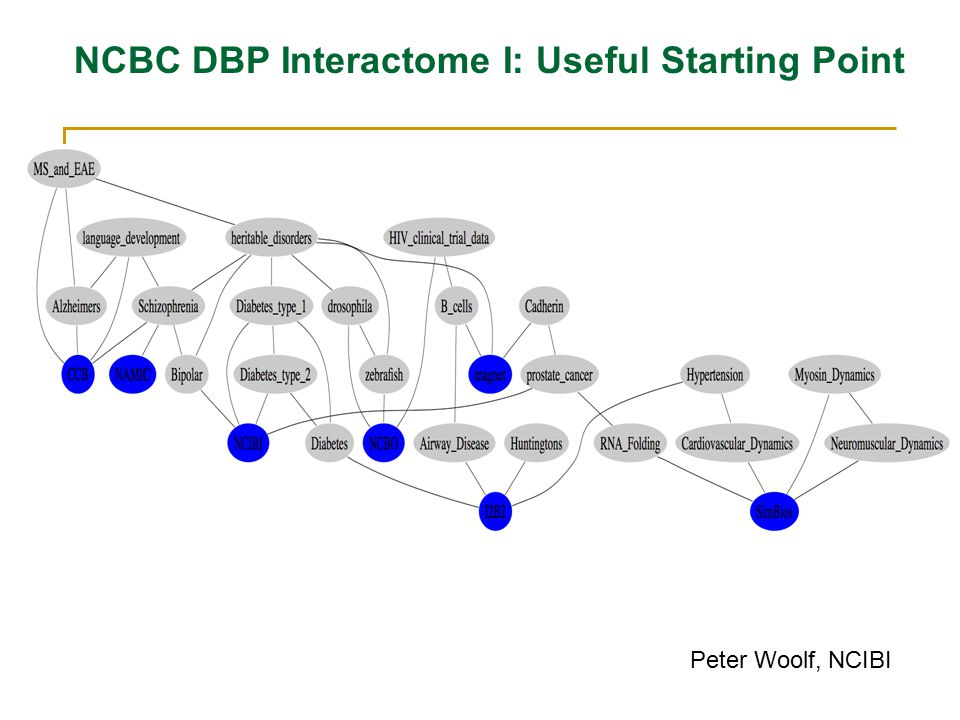 NCBC DBP Interactome I: Useful Starting Point Peter Woolf, NCIBI