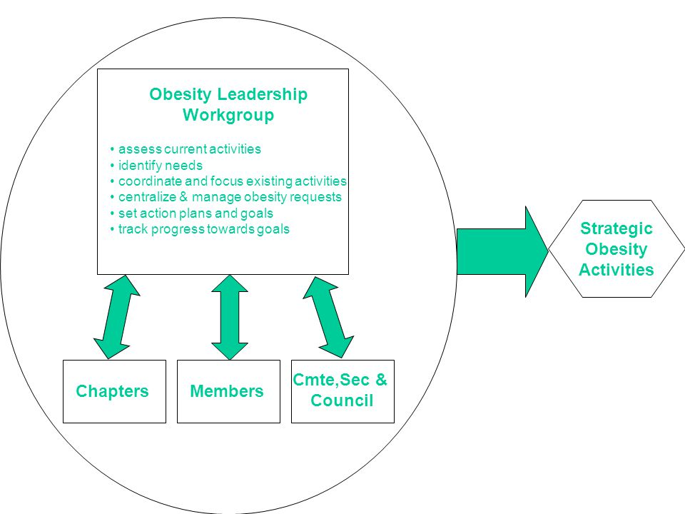 Chapters Strategic Obesity Activities Obesity Leadership Workgroup assess current activities identify needs coordinate and focus existing activities centralize & manage obesity requests set action plans and goals track progress towards goals Members Cmte,Sec & Council