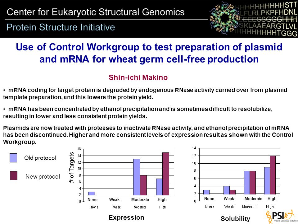 Expression Solubility Old protocol New protocol None Weak Moderate High Use of Control Workgroup to test preparation of plasmid and mRNA for wheat germ cell-free production Shin-ichi Makino mRNA coding for target protein is degraded by endogenous RNase activity carried over from plasmid template preparation, and this lowers the protein yield.