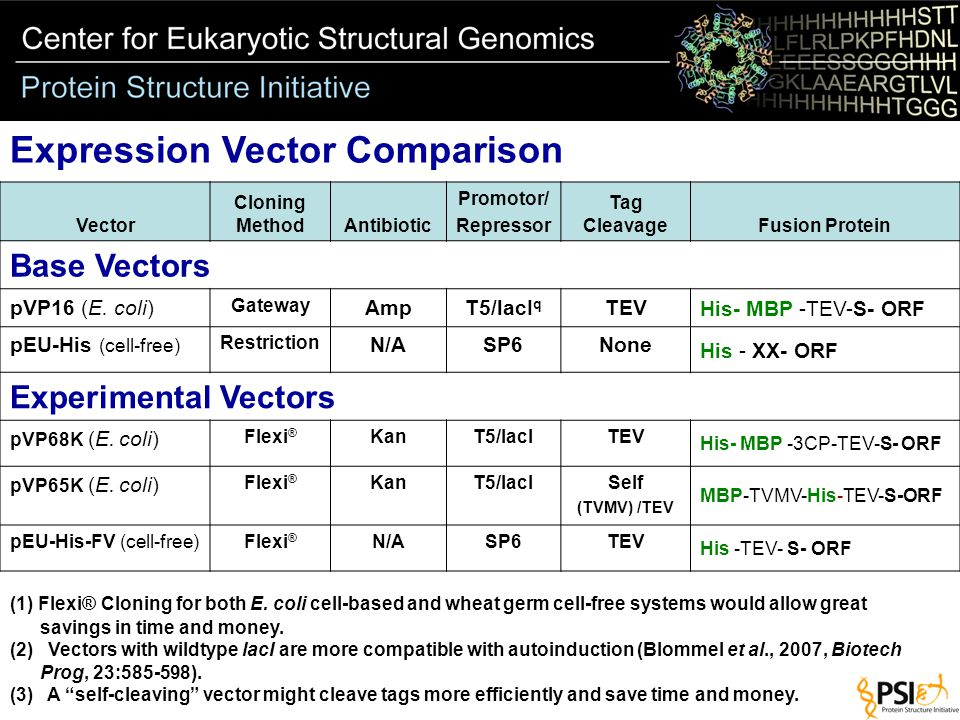 Expression Vector Comparison (1) Flexi® Cloning for both E.