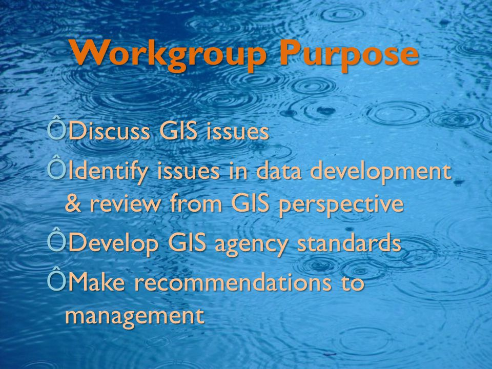 Workgroup Purpose ÔDiscuss GIS issues ÔIdentify issues in data development & review from GIS perspective ÔDevelop GIS agency standards ÔMake recommendations to management