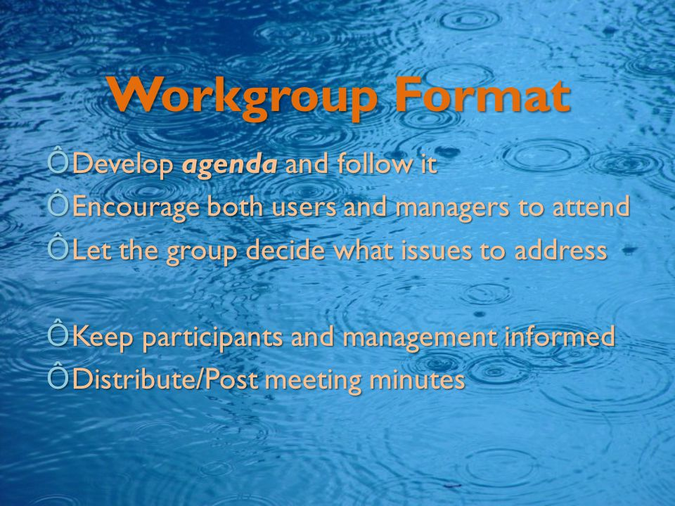 Workgroup Format ÔDevelop agenda and follow it ÔEncourage both users and managers to attend ÔLet the group decide what issues to address ÔKeep participants and management informed ÔDistribute/Post meeting minutes