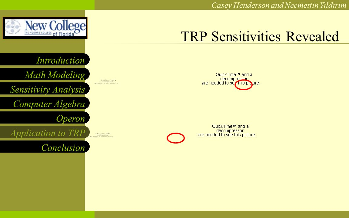 NCF LOGO Casey Henderson and Necmettin Yildirim Sensitivity Analysis Computer Algebra Operon Application to TRP Math Modeling Introduction Conclusion TRP Sensitivities Revealed