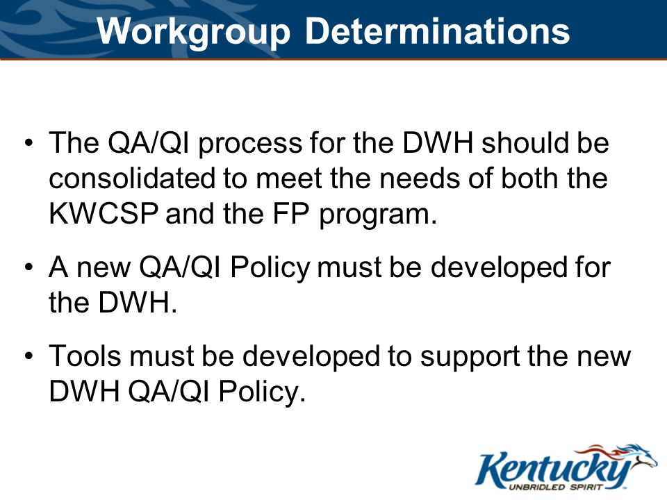 Workgroup Determinations The QA/QI process for the DWH should be consolidated to meet the needs of both the KWCSP and the FP program.