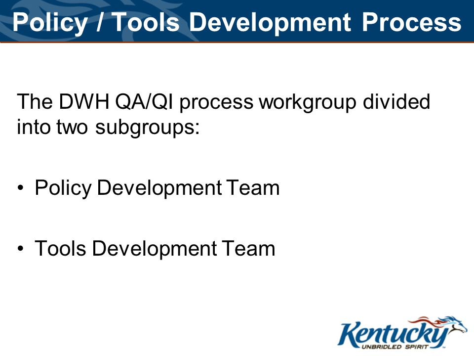 Policy / Tools Development Process The DWH QA/QI process workgroup divided into two subgroups: Policy Development Team Tools Development Team