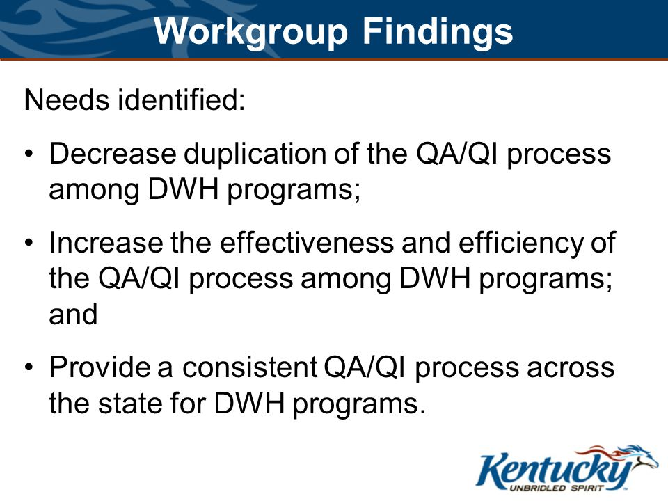 Workgroup Findings Needs identified: Decrease duplication of the QA/QI process among DWH programs; Increase the effectiveness and efficiency of the QA/QI process among DWH programs; and Provide a consistent QA/QI process across the state for DWH programs.