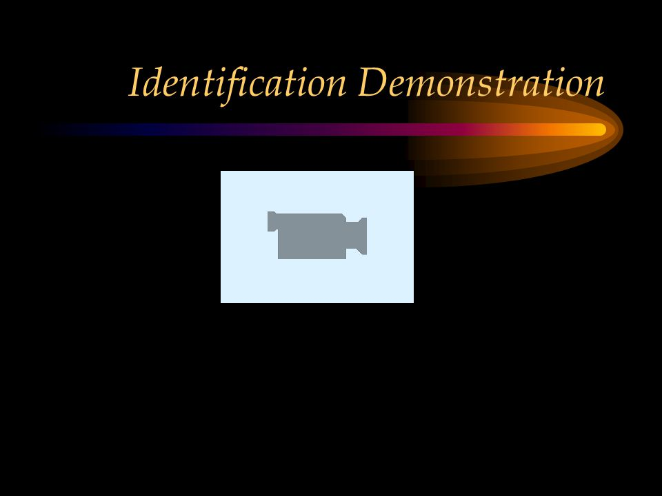 Identification Demonstration