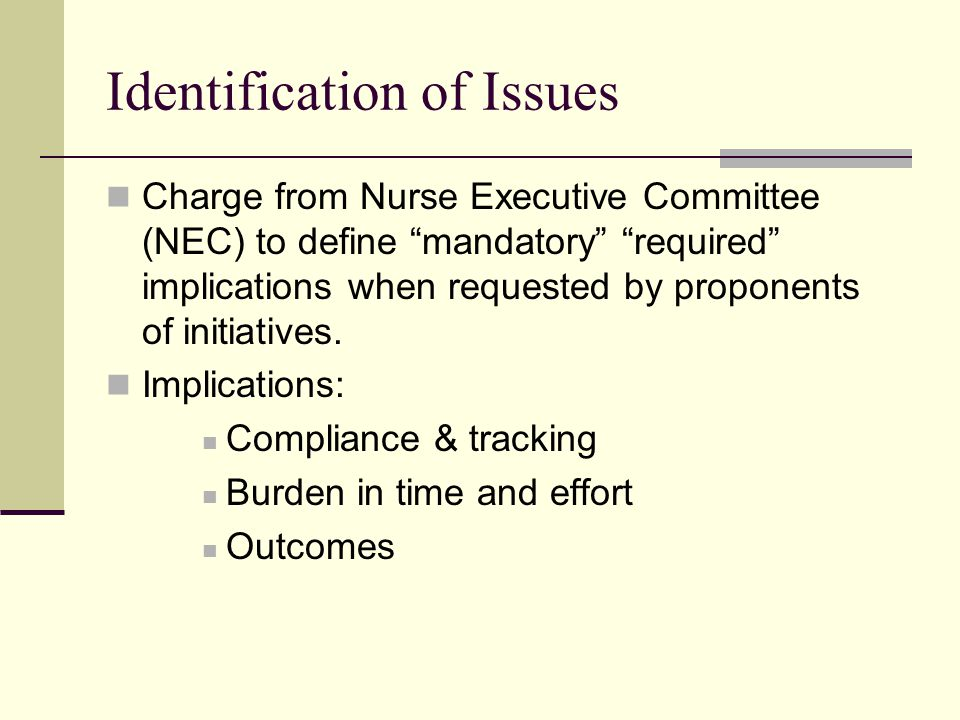 Identification of Issues Charge from Nurse Executive Committee (NEC) to define mandatory required implications when requested by proponents of initiatives.