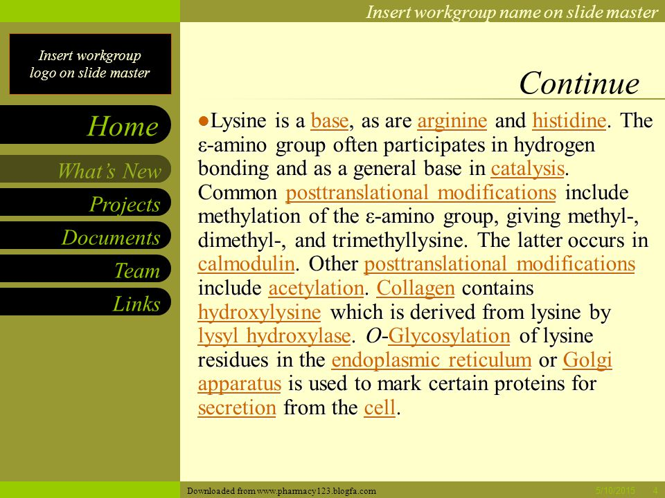 Insert workgroup logo on slide master Insert workgroup name on slide master Projects Documents Team Links What's New Home 5/10/20155 Biosynthesis As an essential amino acid, lysine is not synthesized in animals, hence it must be ingested as lysine or lysine-containing proteins.