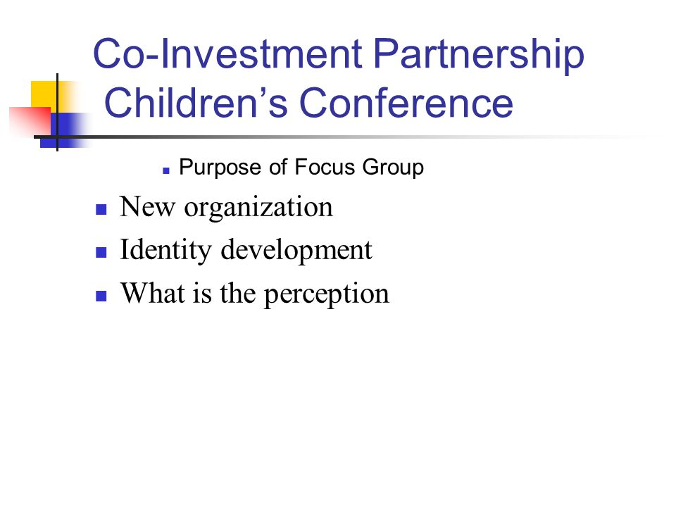 Co-Investment Partnership Children's Conference Purpose of Focus Group New organization Identity development What is the perception