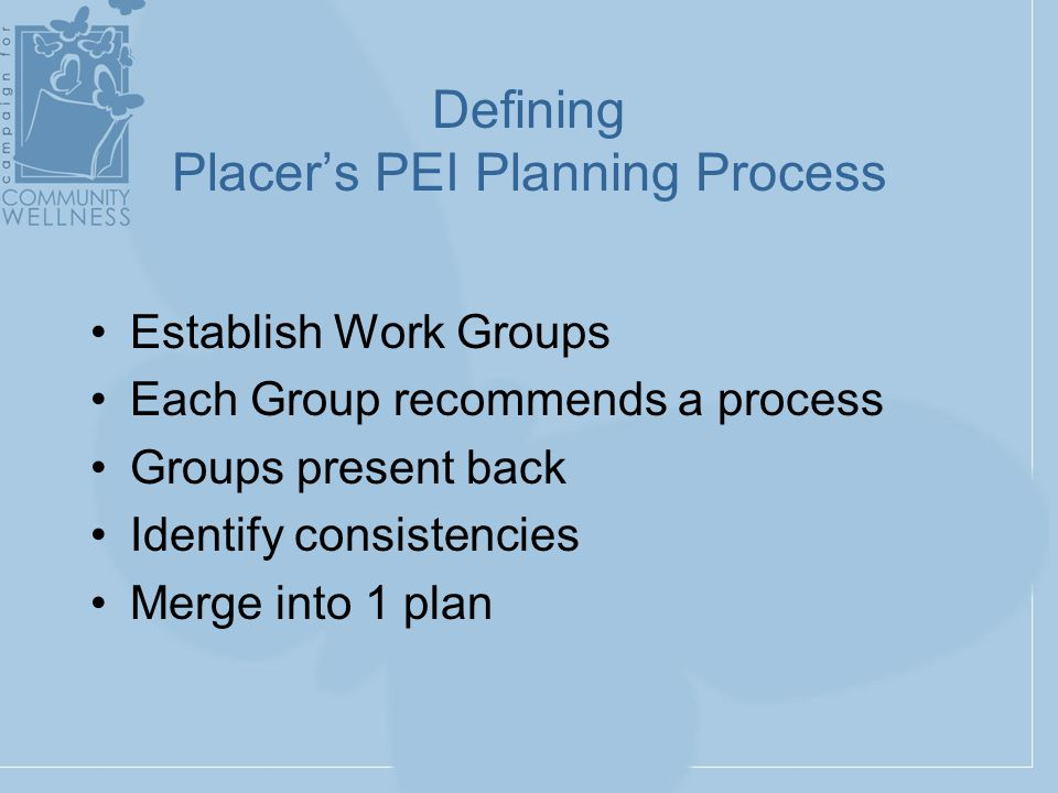 Defining Placer's PEI Planning Process Establish Work Groups Each Group recommends a process Groups present back Identify consistencies Merge into 1 plan