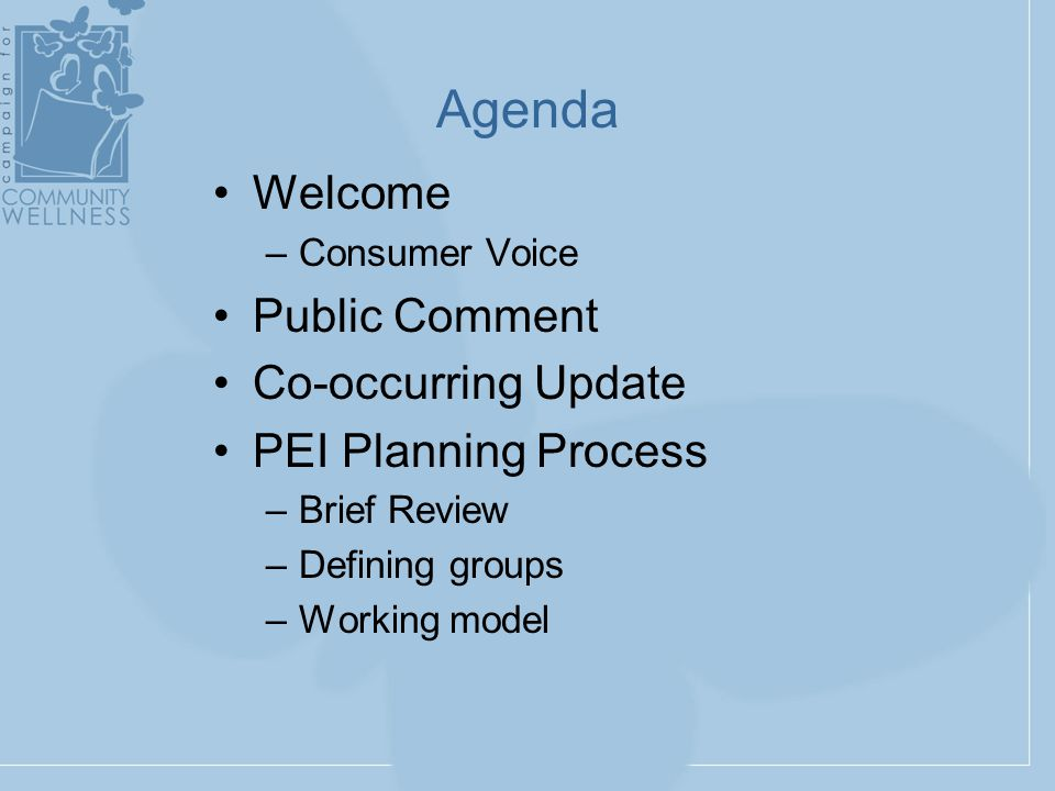 Welcome –Consumer Voice Public Comment Co-occurring Update PEI Planning Process –Brief Review –Defining groups –Working model Agenda