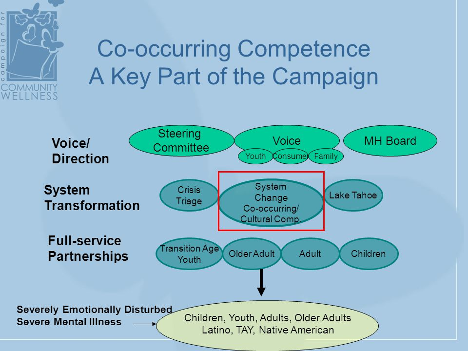 Crisis Triage Steering Committee Transition Age Youth AdultOlder Adult Lake Tahoe Children System Change Co-occurring/ Cultural Comp.