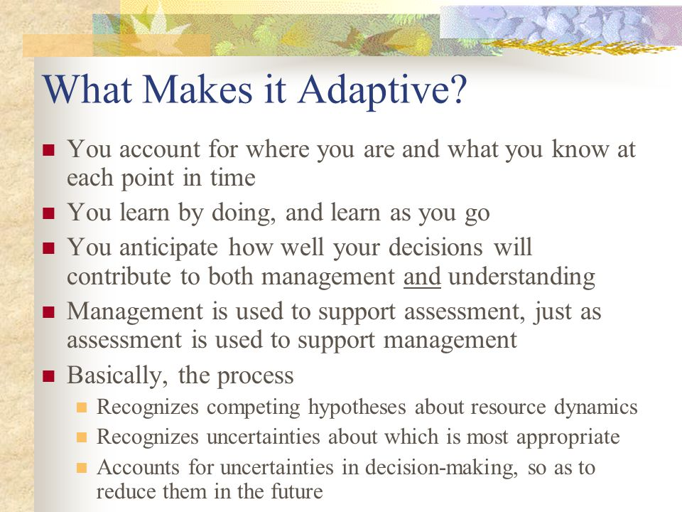 What Makes it Adaptive? You account for where you are and what you know at each point in time You learn by doing, and learn as you go You anticipate h