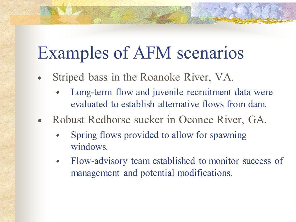 Examples of AFM scenarios  Striped bass in the Roanoke River, VA.