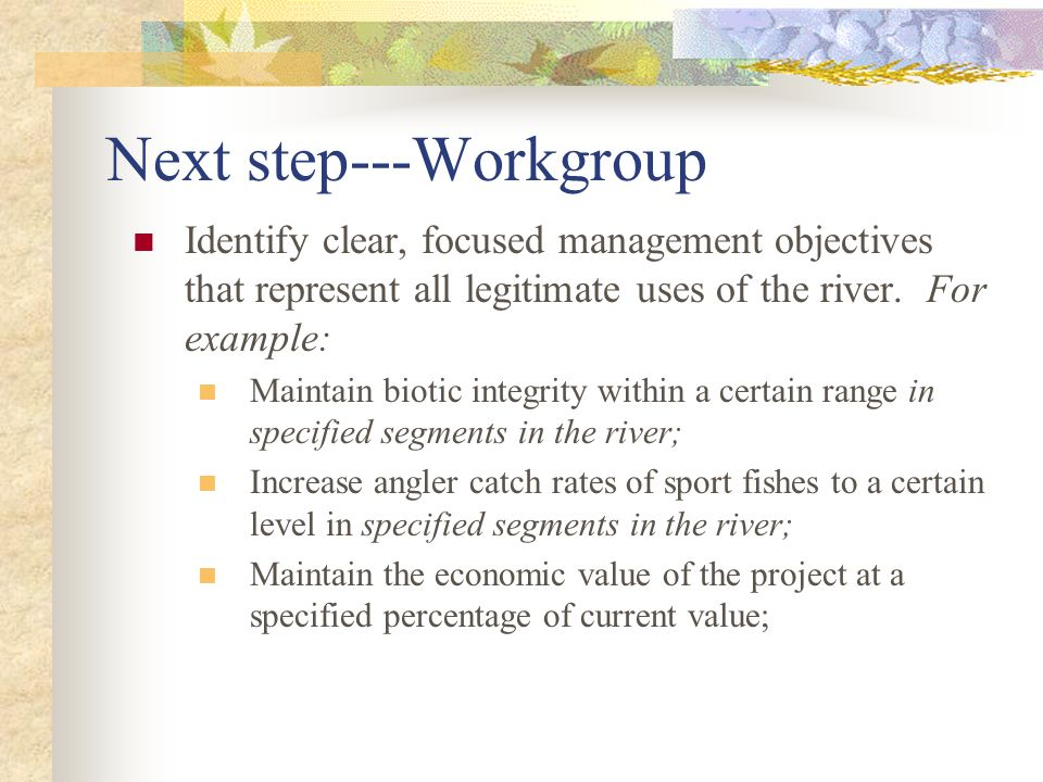 Next step---Workgroup Identify clear, focused management objectives that represent all legitimate uses of the river. For example: Maintain biotic inte