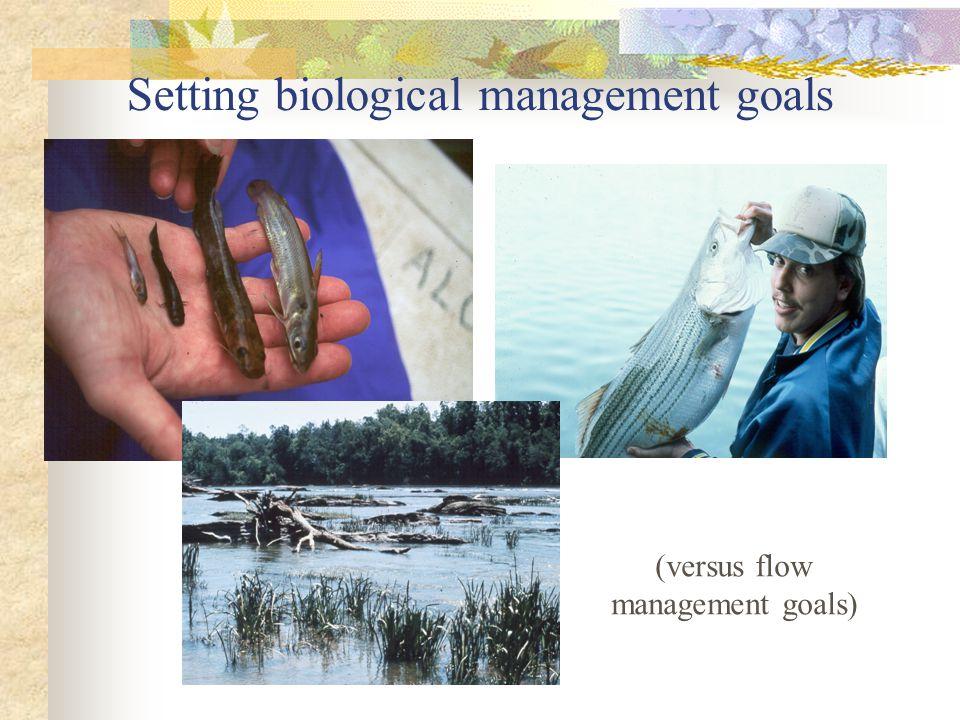 Setting biological management goals (versus flow management goals)
