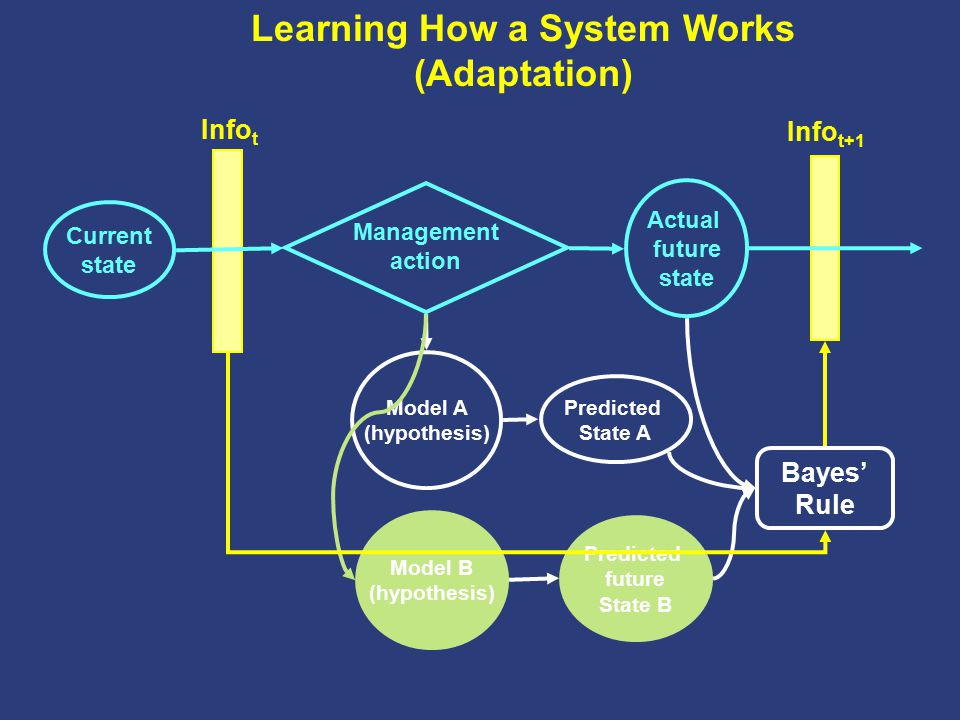 Learning How a System Works (Adaptation) Current state Management action Actual future state Model A (hypothesis) Predicted State A Model B (hypothesi