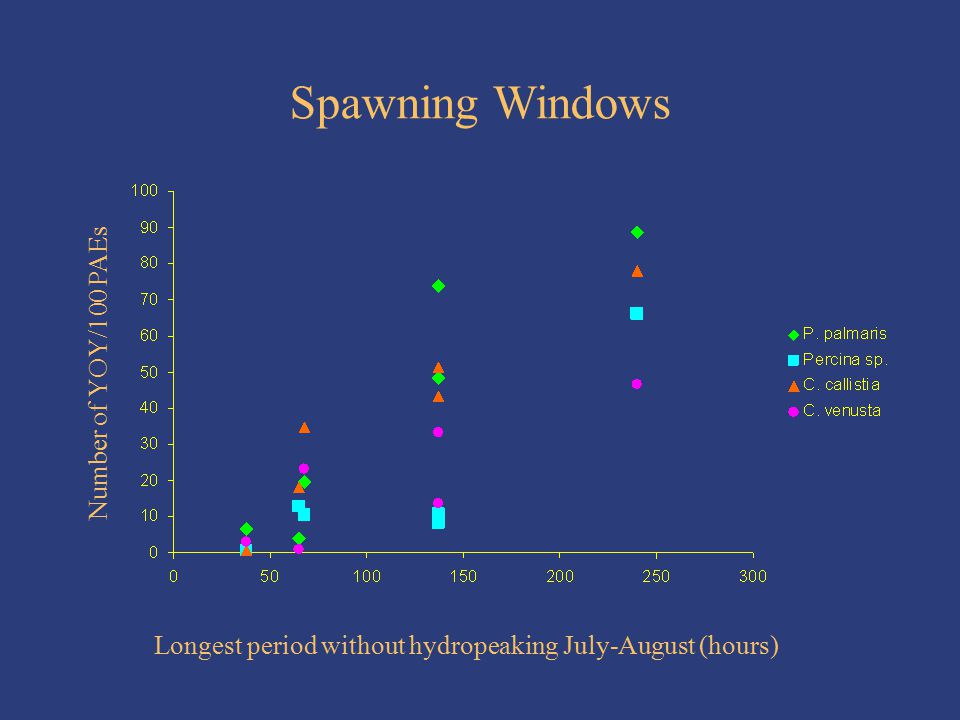 Spawning Windows Longest period without hydropeaking July-August (hours) Number of YOY/100 PAEs