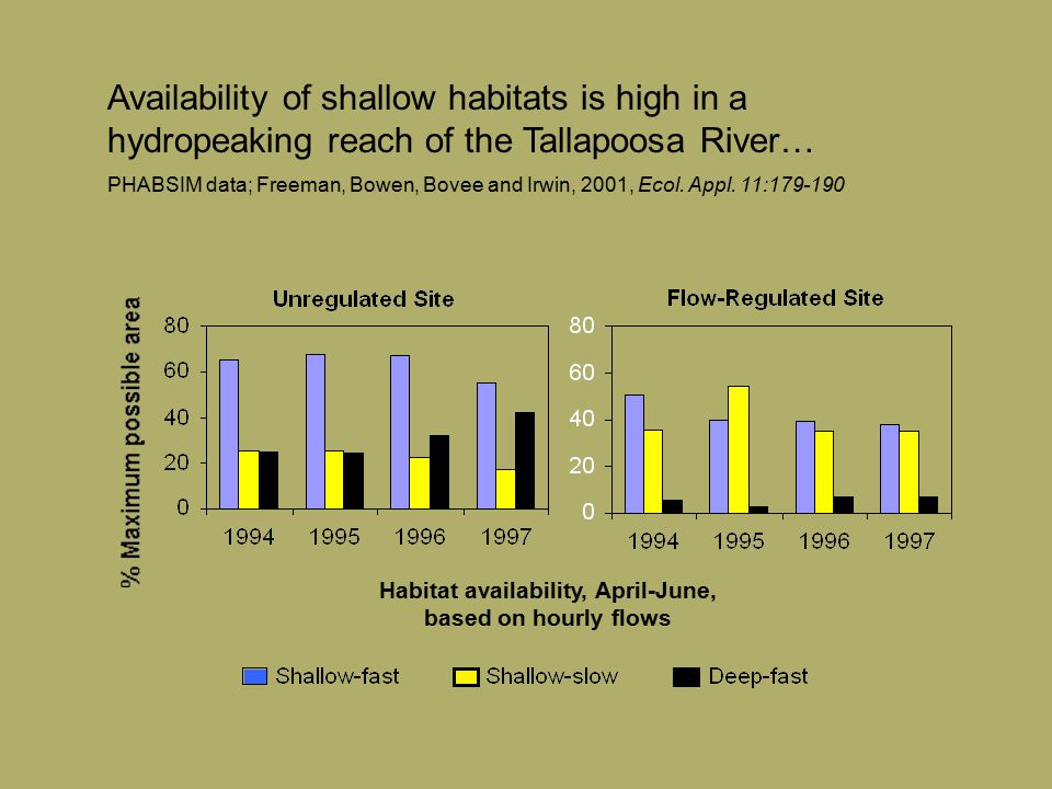 Availability of shallow habitats is high in a hydropeaking reach of the Tallapoosa River… PHABSIM data; Freeman, Bowen, Bovee and Irwin, 2001, Ecol. A