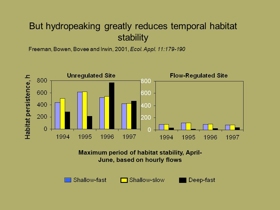 Maximum period of habitat stability, April- June, based on hourly flows But hydropeaking greatly reduces temporal habitat stability Freeman, Bowen, Bovee and Irwin, 2001, Ecol.