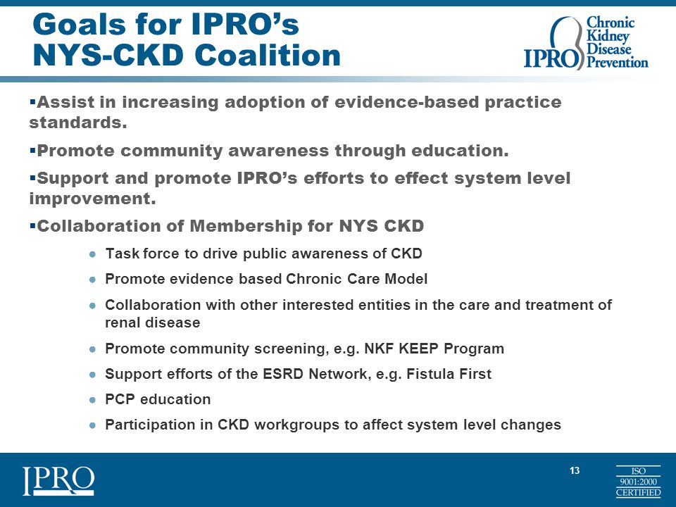 13 Goals for IPRO's NYS-CKD Coalition  Assist in increasing adoption of evidence-based practice standards.