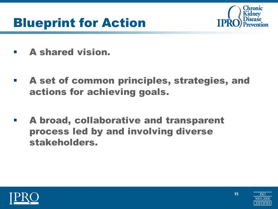 15 Blueprint for Action  A shared vision.