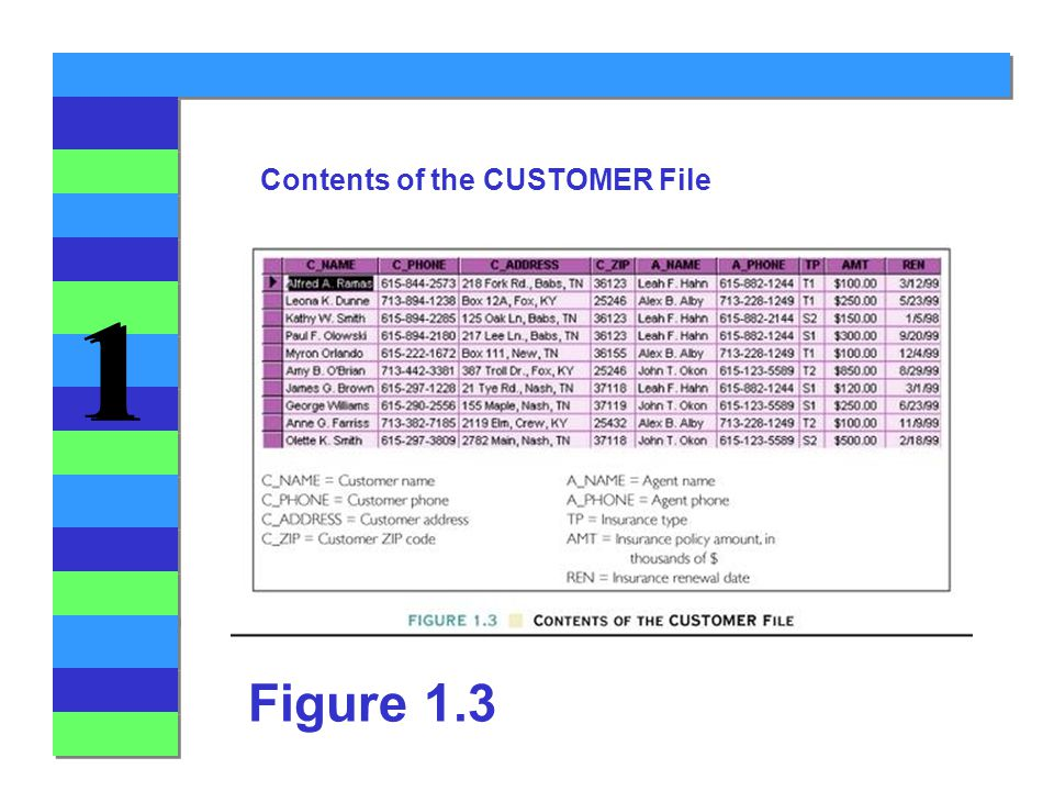 1 1 Figure 1.3 Contents of the CUSTOMER File