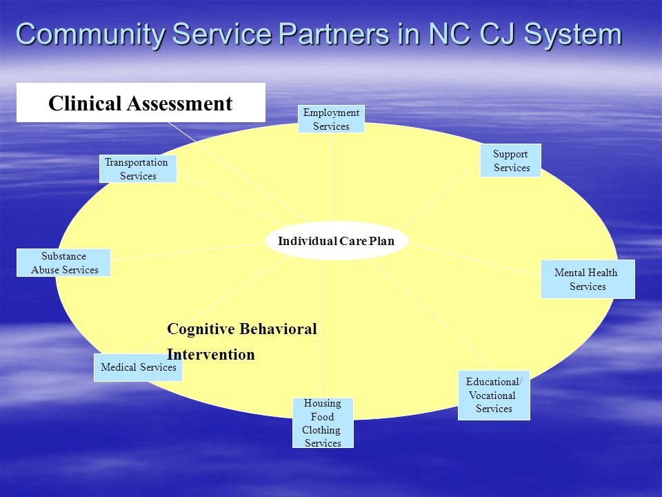 Clinical Assessment Individual Care Plan Support Services Housing Food Clothing Services Educational/ Vocational Services Substance Abuse Services Medical Services Mental Health Services Transportation Services Employment Services Cognitive Behavioral Intervention Community Service Partners in NC CJ System