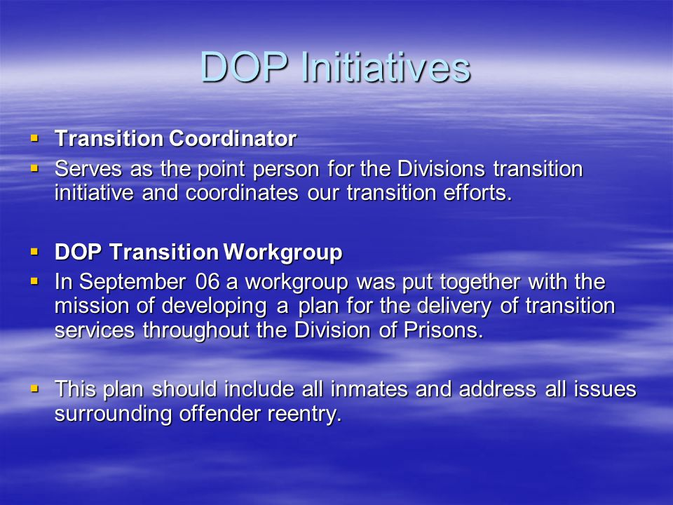 DOP Initiatives  Transition Coordinator  Serves as the point person for the Divisions transition initiative and coordinates our transition efforts.