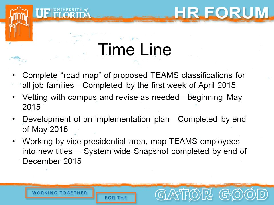 Time Line Complete road map of proposed TEAMS classifications for all job families—Completed by the first week of April 2015 Vetting with campus and revise as needed—beginning May 2015 Development of an implementation plan—Completed by end of May 2015 Working by vice presidential area, map TEAMS employees into new titles— System wide Snapshot completed by end of December 2015
