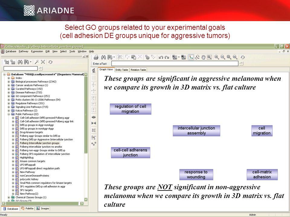 ©2006 Ariadne Genomics. All Rights Reserved. 111 ©2006 Ariadne Genomics.