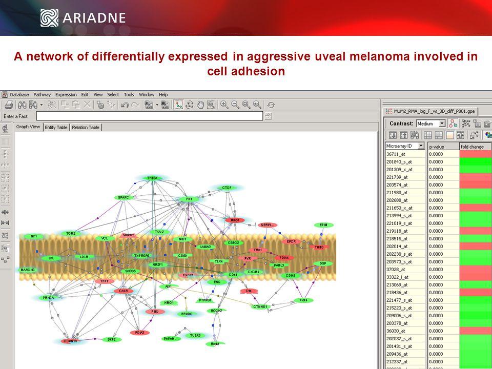 ©2006 Ariadne Genomics. All Rights Reserved. 112 ©2006 Ariadne Genomics.
