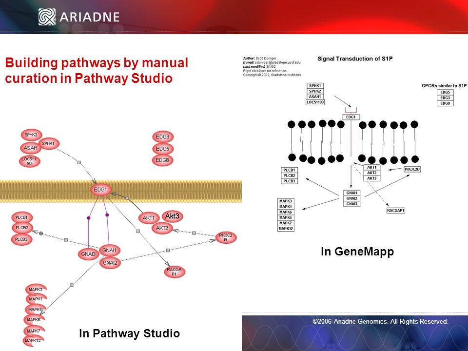©2006 Ariadne Genomics. All Rights Reserved. 43 ©2006 Ariadne Genomics.
