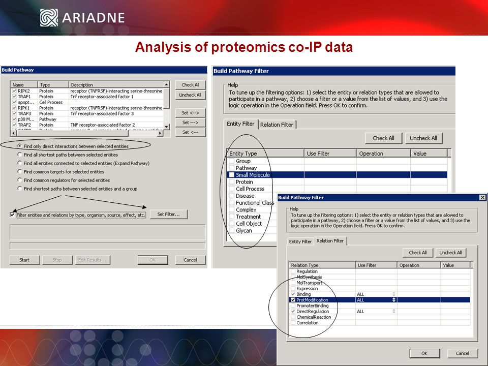 ©2006 Ariadne Genomics. All Rights Reserved. 61 ©2006 Ariadne Genomics.