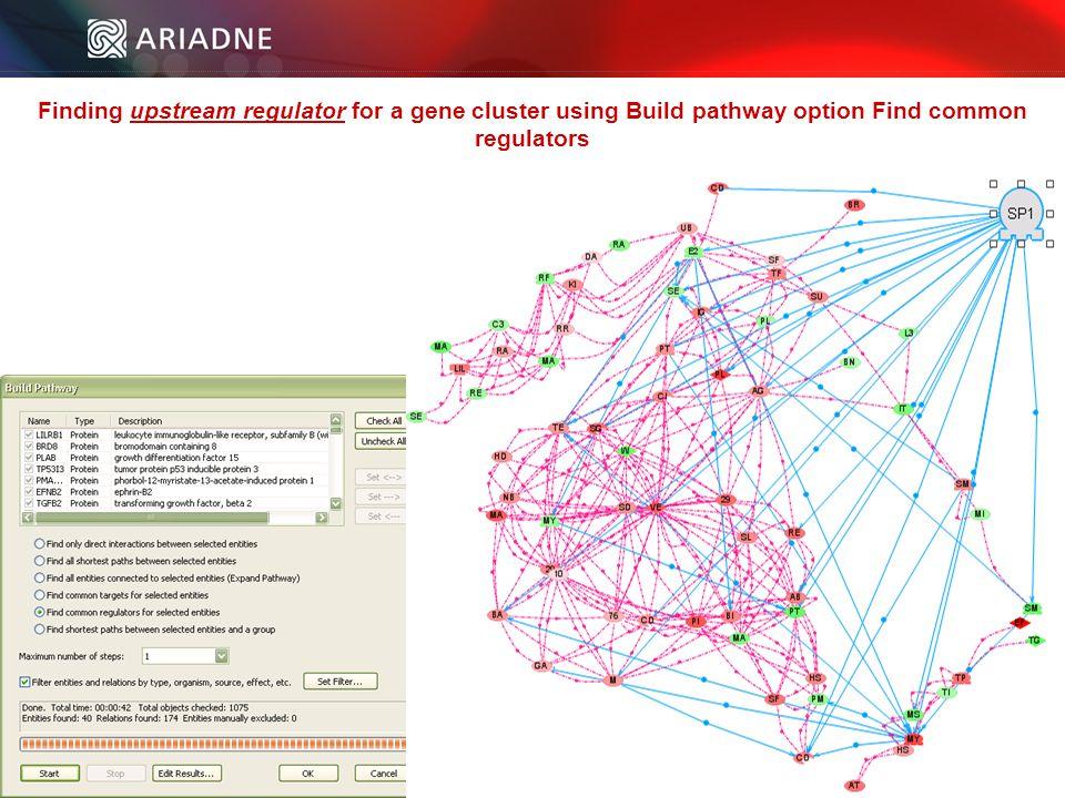 ©2006 Ariadne Genomics. All Rights Reserved. 98 ©2006 Ariadne Genomics.