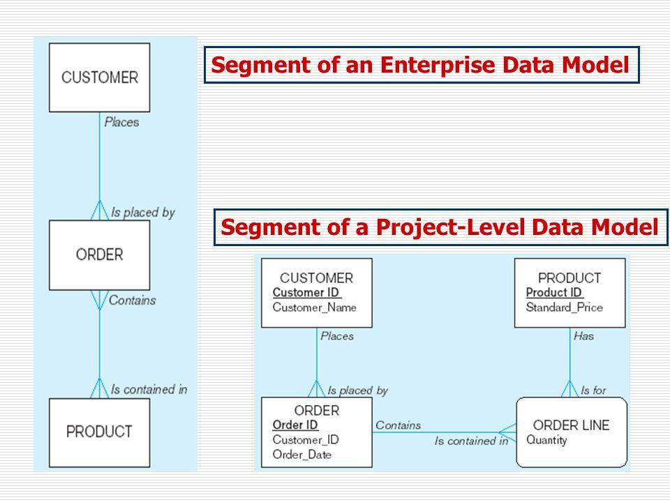 Segment of an Enterprise Data Model Segment of a Project-Level Data Model