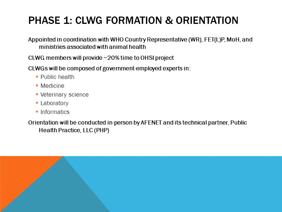 PHASE 1: CLWG FORMATION & ORIENTATION Appointed in coordination with WHO Country Representative (WR), FET(L)P, MoH, and ministries associated with ani