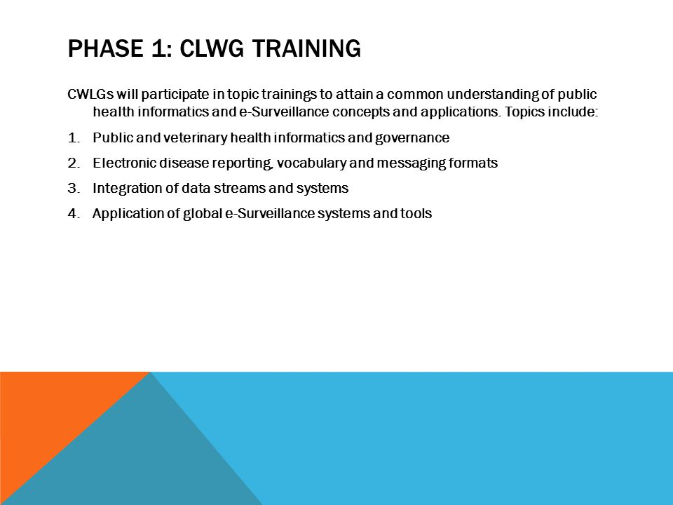 PHASE 1: CLWG TRAINING CWLGs will participate in topic trainings to attain a common understanding of public health informatics and e-Surveillance concepts and applications.