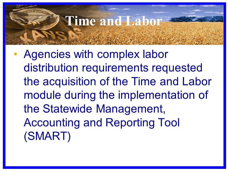 Time and Labor Agencies with complex labor distribution requirements requested the acquisition of the Time and Labor module during the implementation