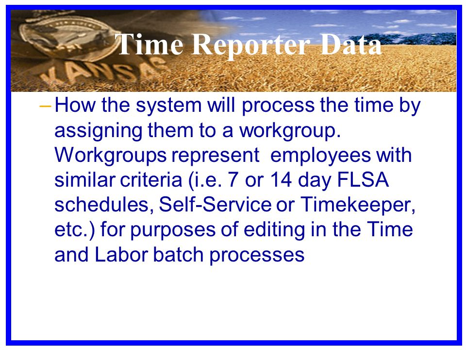 Time Reporter Data –How the system will process the time by assigning them to a workgroup. Workgroups represent employees with similar criteria (i.e.