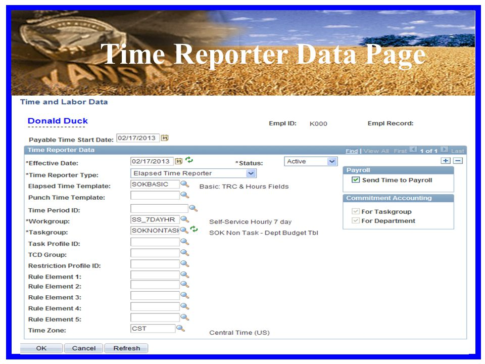 Time Reporter Data Page