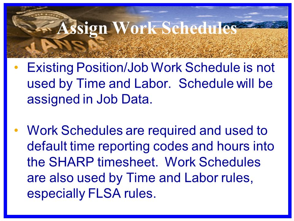 Assign Work Schedules Existing Position/Job Work Schedule is not used by Time and Labor. Schedule will be assigned in Job Data. Work Schedules are req